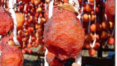 Photo of How to Turn Astringent Persimmons into Enchanting Natural Confections, Japanese Style