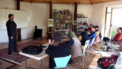 Photo of The New Permaculture Research Institute 10-Week Internship Program