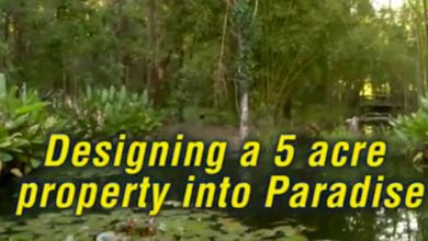 "Photo of Free Permaculture Videos: ""5 Acre Abundance on a Budget"" is LIVE!"