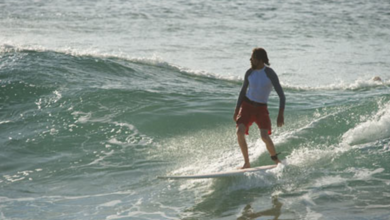 Photo of Reading the Landscape – Surfing and Permaculture (video)
