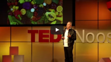Photo of Humus – the Essential Ingredient (TEDx video)