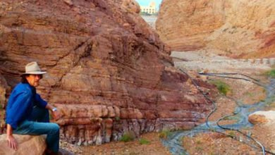 Photo of Wadi Mukheris and the Wonder of Gabions (Jordan)