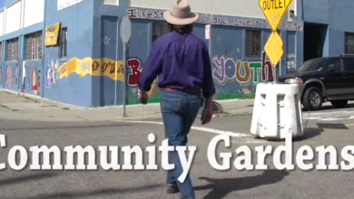 Photo of Community Gardens with Geoff Lawton (video)