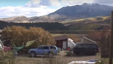 Photo of High on Permaculture in the Rocky Mountains (video)