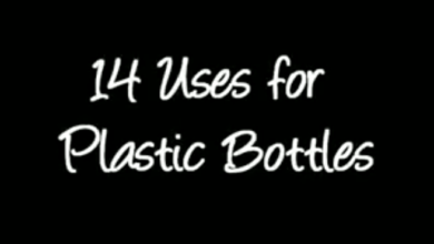 Photo of 14 Re-Uses of Plastic Bottles (video)
