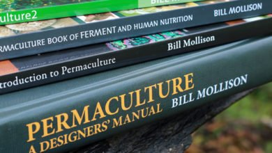 Photo of Geoff Lawton Presents: Permaculture – A Designers' Manual (Podcast)