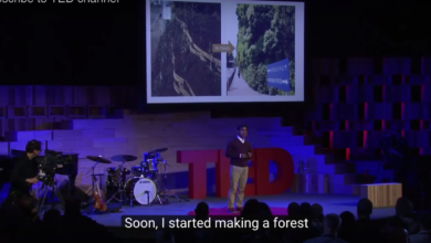 Photo of When Engineers Grow Food Forests (TED video)