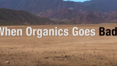 Photo of When Organics Goes Bad
