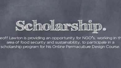 Photo of Geoff Lawton – Online PDC – Scholarship for NGO