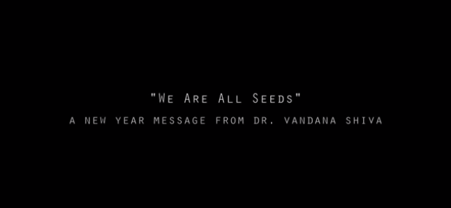 We-are-all-seeds