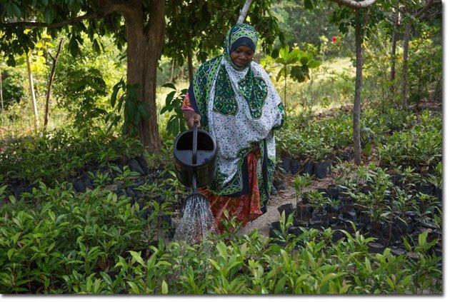 5-Bimajo,-Pemban-community-member