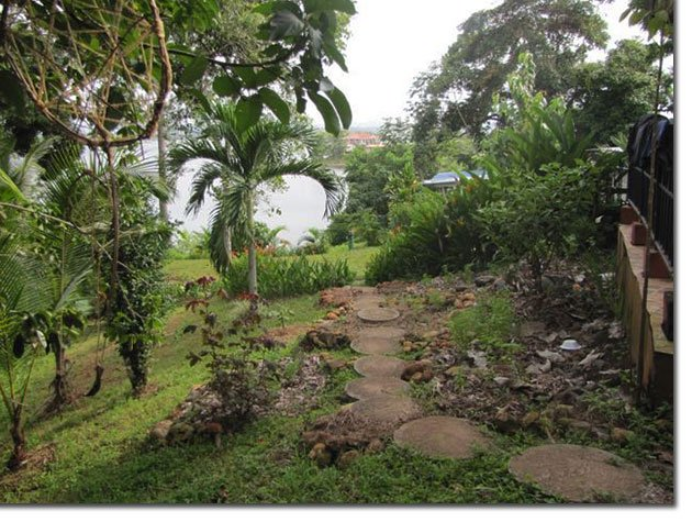 Panamanian-Medicine-Garden