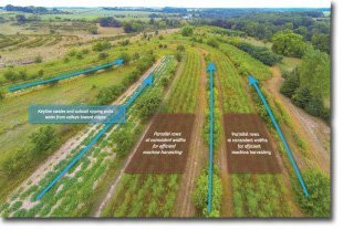 Restoration-Agriculture-Systems-6