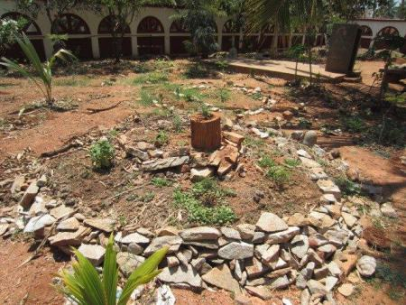 Beginning of Food Forest Implementation, Odanadi Women's Orphanage, Mysore, India (2013)
