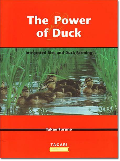 the_power_of_duck1