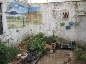 Greenhouse From Found Objects
