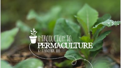 Photo of Introduction to Permaculture with Geoff Lawton at PRI Australia