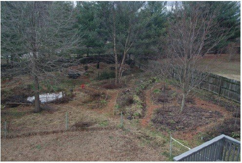 Most of the garden from an upstairs window before rainstorm. December 22nd, 2013