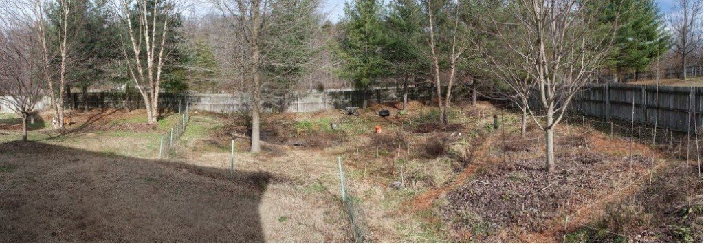 In a cooler winter, more of the garden lies dormant. December 28th, 2013