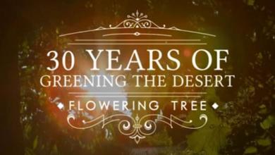 Photo of 30 Years of Greening the Desert – Flowering Tree