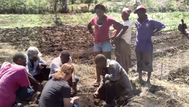 Photo of Take Permaculture to Haiti