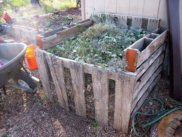 Compost at Capacity (Courtesy of Alan Levine)