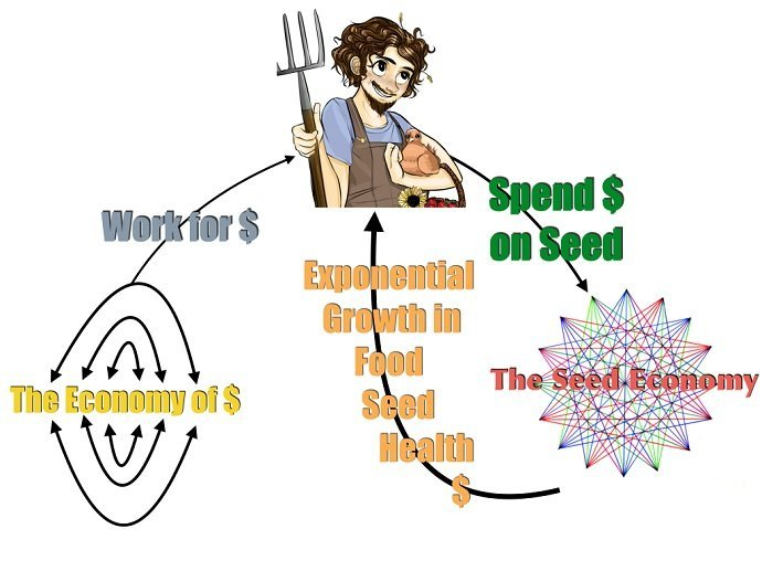 Seed Economy.006