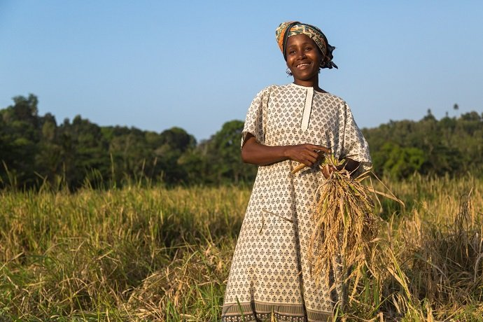 Farmer saving seed from her crop of locally adapted rice – Minyenyeni, Pemba.  Photo Zach Melanson