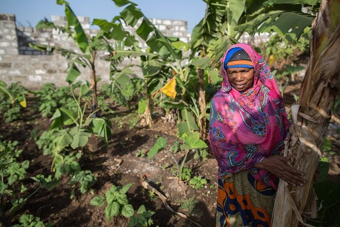 Community leader Asha Yussuf Hassan of Maziwa Ng'ombe, Pemba surveys her budding Permaculture Kitchen Garden. She, and hundreds of other women like her, have benefitted from Siti's permaculture training.  Photo Zach Melanson