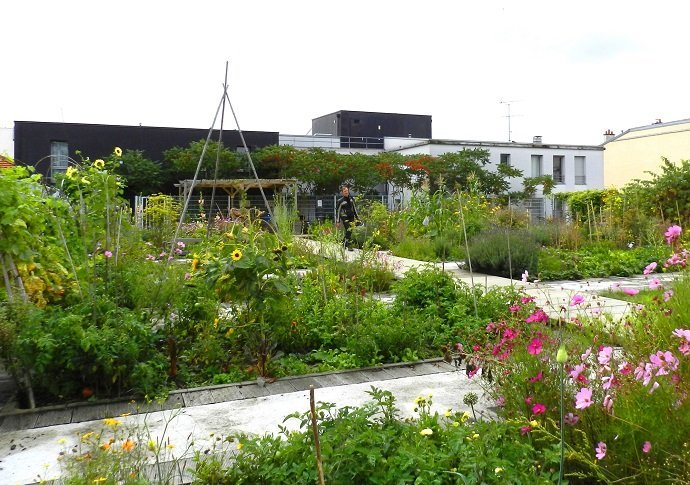 17 beds filled with food, flowers and herbs: a meeting place for people and nature.