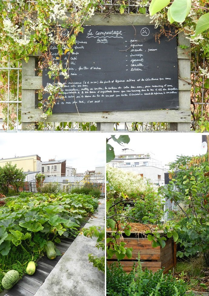 Top: Recipe for healthy compost. Bottom left: Heritage squash and pumpkin varieties. Bottom right: Urban rooftop composting – there are several composing bins around the garden.