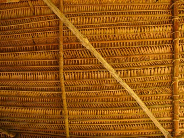 Close-up of Cohune Thatching, image credit Emma Engels