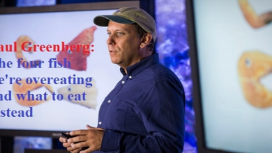 Photo of The Four Fish We are Over Eating – And What to Eat Instead
