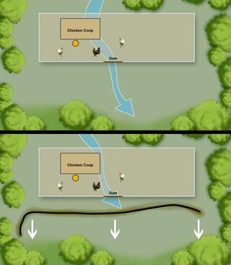 Before and after illustration.