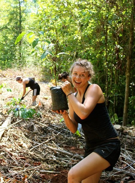 Planting an orchard of Maya Nut trees with our apprentice crew.