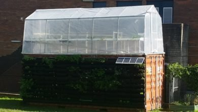 Photo of Sprouting Good's Aquaponics