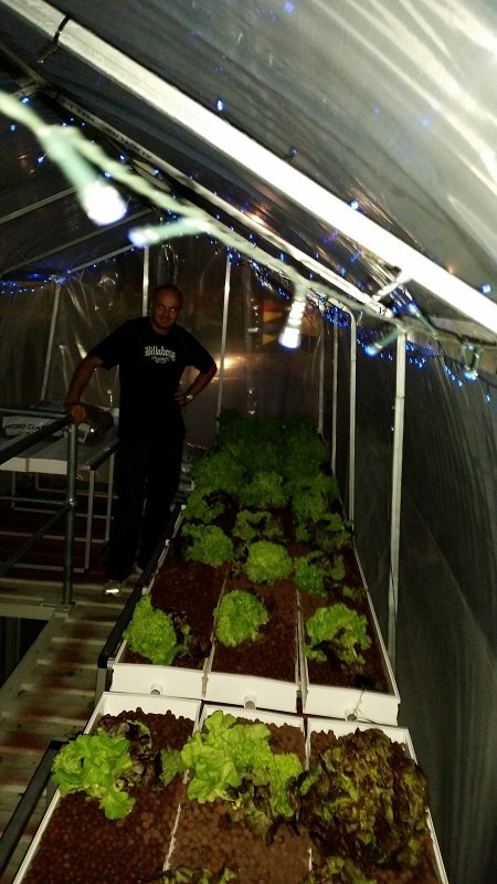 Sprouting Good's Aquaponics 02
