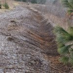 This slightly off contour swale absorbs run-off – filtering the water for the adjoining pond.