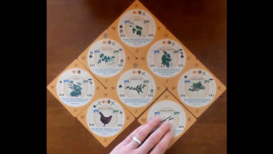 Photo of The Food Forest Card Game