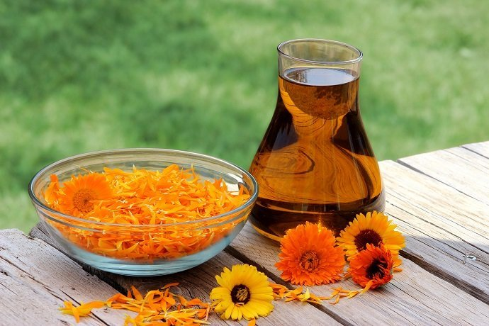 Calendula flower petals and oil extract in a glass jug