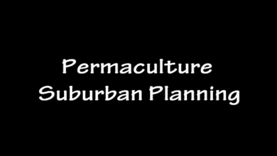 Photo of Permaculture Suburban Planning