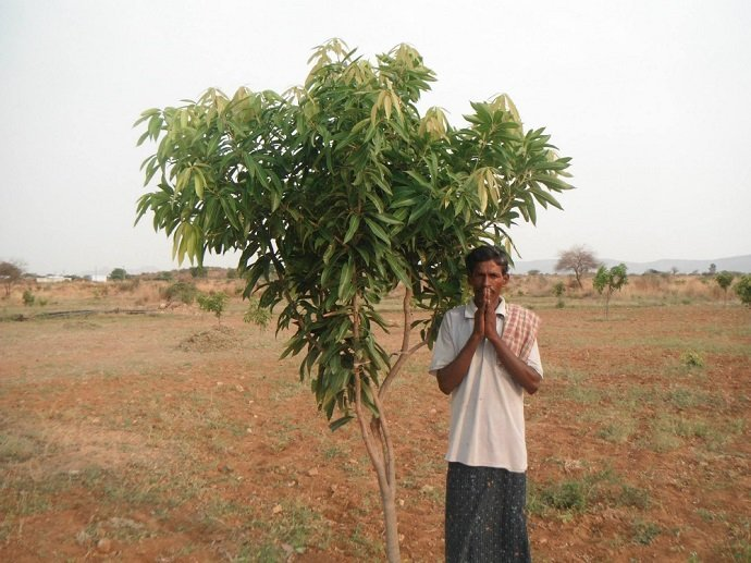 Plant Trees - Plant Hope in India 04