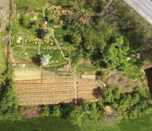 The biomass belt is located in the red box in the above image of our Polyculture Market Garden.