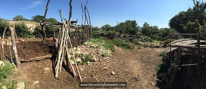 Photo of Evolutions on Mr. Phiri's Water-Harvesting Plantation, 1995–2016