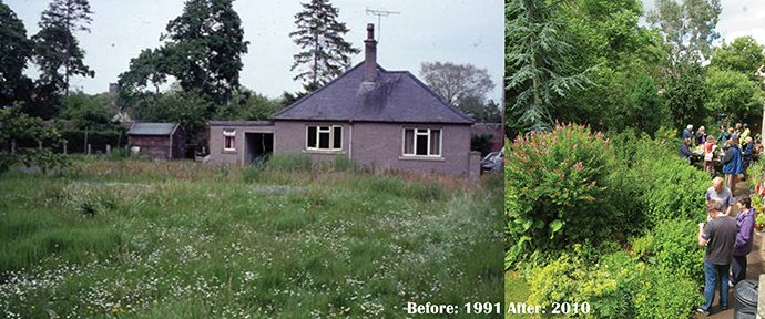 Before-After-Graham-bell