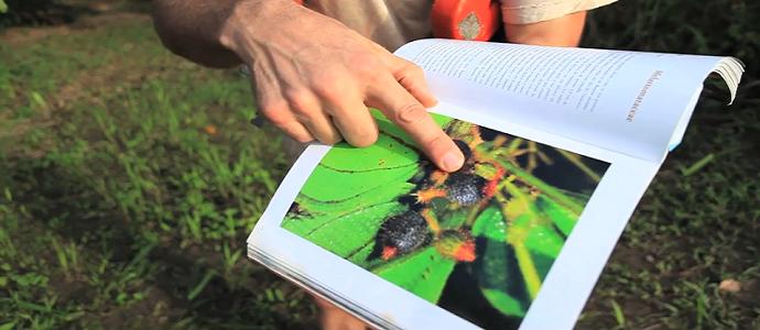 Photo of Botanical Explorers: The Fruitful Forest (Full Movie)