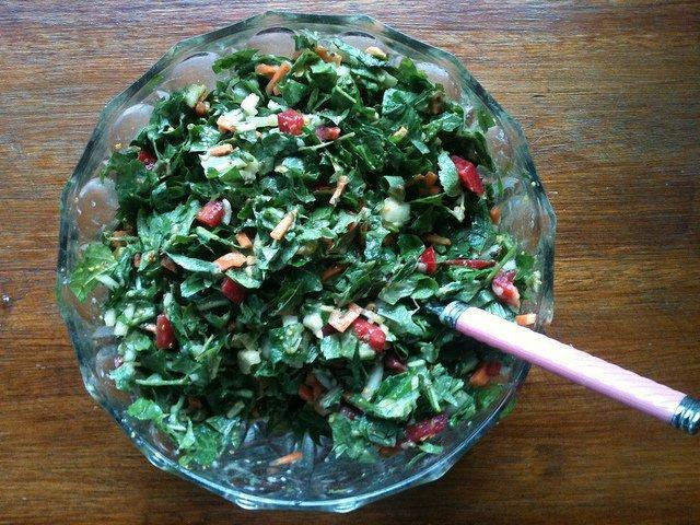 Dandelion Salad (TijsB)