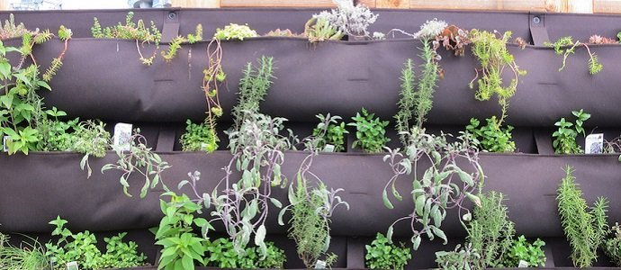 Photo of 20 Garden Hacks for the Quirky and Pragmatic Permaculturalist