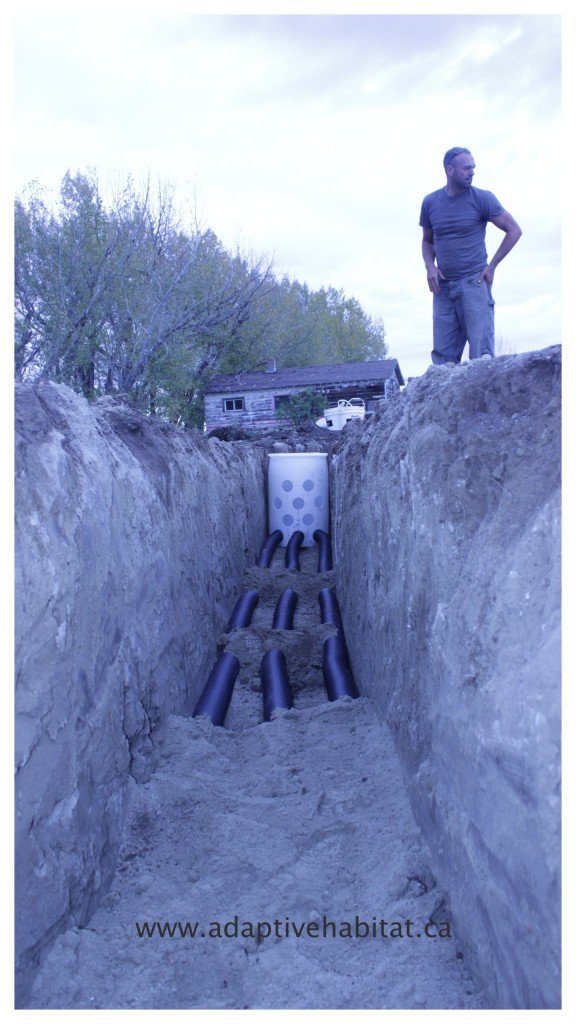 In the Trench