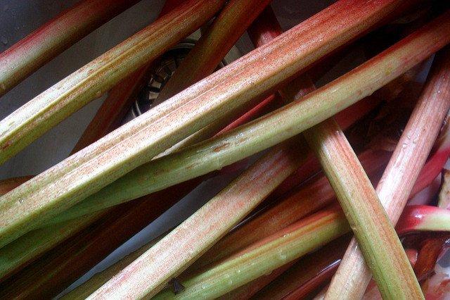 Rhubarb Stalks (Courtesy of Christian Guthier)